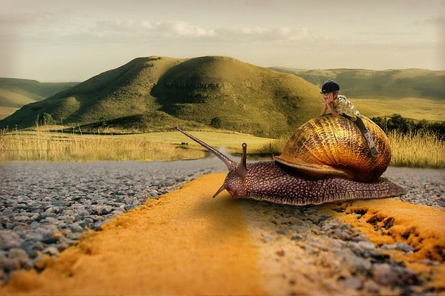 Feuille de route pour la médiocrité - la voie lente de l'autoroute du millionnaire