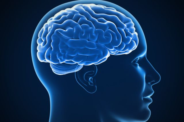 Gourous autoproclamés et cerveaux néandertaliens