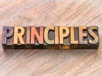 Carnaval d'articles - Les 3 principes essentiels pour réussir dans votre domaine